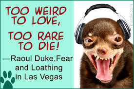 extremely popular quotes from u0027fear and loathing in las vegas u0027
