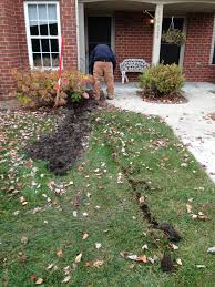 professional lawn drainage solutions in ann arbor