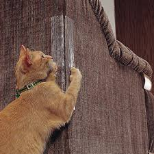 How To Fix Scratched Leather Sofa My Cat Scratched My Leather Couch Crab Cat Industries