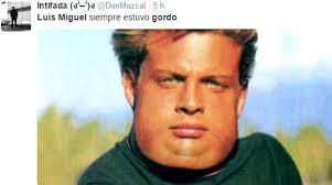 Memes Luis Miguel - twitter memes se burlan por supuesta gordura de luis miguel foto