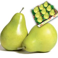 gourmet pears fresh pears gourmet gift baskets for all occasions
