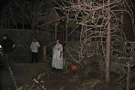 Haunted Backyard Ideas Best Haunted House Ideas Design Decoration