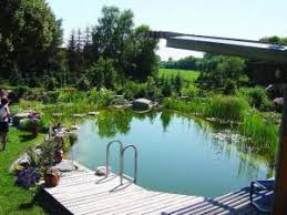 Backyard Swimming Ponds - a dip in the pond landscape ontario com green for life