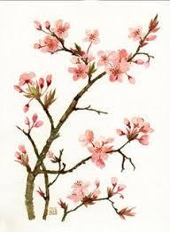 Japanese Flower Artwork - japanese cherry blossom wall art decals japanese cherry blossom