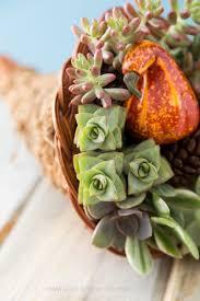 cornucopia centerpiece succulent filled cornucopia thanksgiving centerpiece idea