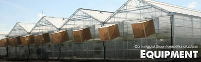 Glass Blowing Ventilation Commercial Greenhouse Manufacturer Metal Structure Vegetable