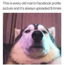 this is every old mans facebook profile picture and it s always