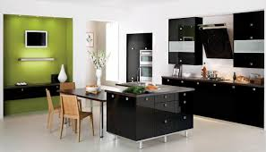 color combination with black combination of the green color in the interior
