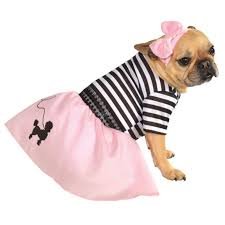 Halloween Costumes Dogs Cutest Puppy Costumes 2011 50 U0027s Dog Halloween Costume Shipping Baxterboo