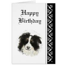 pet birthday cards invitations greeting photo cards zazzle