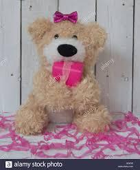 teddy bear happy birthday stock photo royalty free image