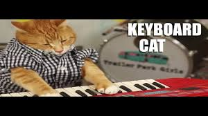 Keyboard Cat Meme - media id 1690023977718237