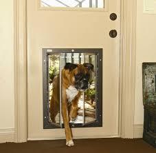 Exterior Pet Door House Best Exterior Door With Door Door