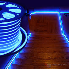 solid apollo led introduces neon strip light bringing also lights