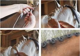 howtododoughnut plait in hair braiding wire for horse hair by twisteezwire