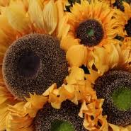 Artificial Sunflowers Best Range Of Quality Silk Artificial Flowers U0026 Artificial Plants