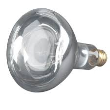 brand name heat lamp bulbs bulbamerica