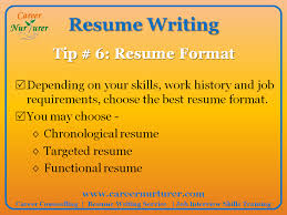 Best Resume Writing Service 2013 by Guidelines For Writing A Professional Resume Cv Career