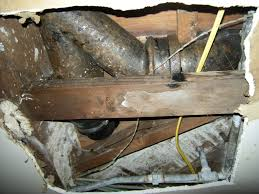 cast iron pipes signs of damage insurance claims
