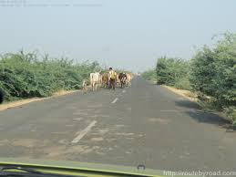 India Google Maps by Google Maps India Road Distance Calculator India Road Trip