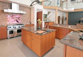 dramatic contemporary kitchen long grove il