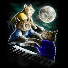 3 Wolf Moon Meme - magical this three keyboard cat moon shirt geekologie