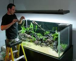 Aquascape Designs For Aquariums 37 Best Aquascaping Images On Pinterest Aquarium Ideas Planted