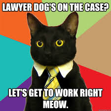 Lawyer Cat Meme - lawyer dog s on the case cat meme cat planet cat planet