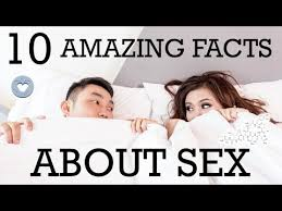 10 amazing sfw facts about did you fact set