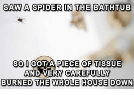 I Saw A Spider Meme - saw a spider in the bathtub so i gotta piece of tissue and very