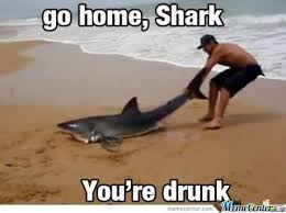 Shark Meme - go home shark by shabaan5 meme center