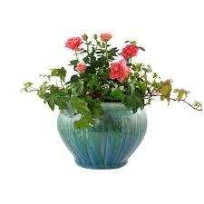 12 in dia assorted color ceramic caspian bowl planter cr10775 12c