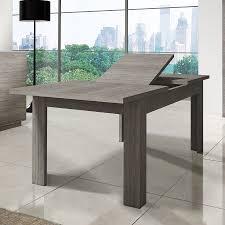 Table Avec Rallonge Pas Cher by Table De Salle A Manger Avec Rallonge 15 Table Avec Rallonge Pas