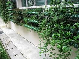 How To Plant Vertical Garden - 13 plastic bottle vertical garden ideas soda bottle garden