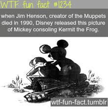 Fact Frog Meme - 25 best memes about fun fact tumblr fun fact tumblr memes
