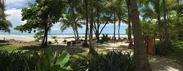 santa teresa mit schnorcheln vor der isla tortuga world insight