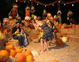halloween spirit bronx zoo brookfield zoo halloween full of