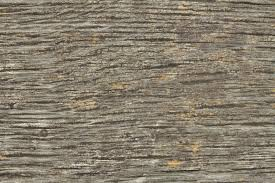 high resolution seamless textures wood 10 cracked bench