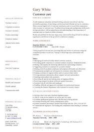 sales representative resume pic sales representative resume template vasgroup co