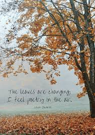 leaves changing feel poetry air autumn