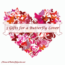 3 valentine gift ideas for a butterfly lover or friend