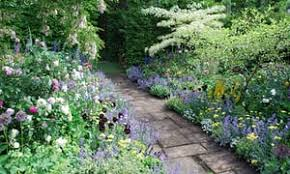 gardening for beginners the cheat u0027s guide to herbaceous borders