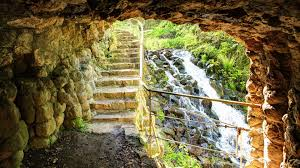 moss stairs wallpapers pictures