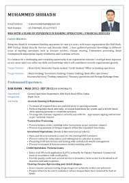 Resume Sample Custodian by 100 Sample Resume Property Accountant Best Contract