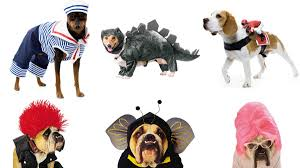 halloween costumes for pets most popular from dog to ghost