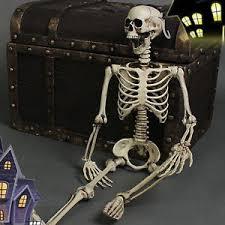 posable skeleton posable skeleton decor scary bone creepy prop party