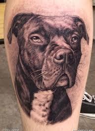 100 pitbull tattoos pitbull tattoo designs tattoo ideas