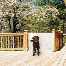 best 25 retractable pet gate ideas on retractable