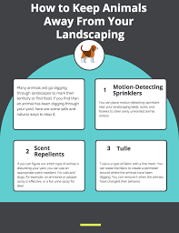 how to keep animals away from your landscape parsons rocks