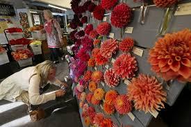 georgetown flowers seattle flower farmers co op grows into blooming success the